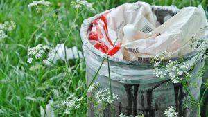 Разработка проекта отходов (ПНООЛР)